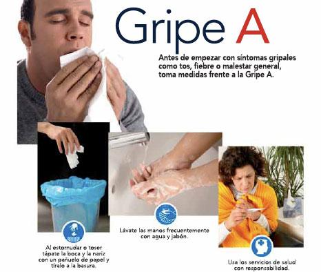 gripea31